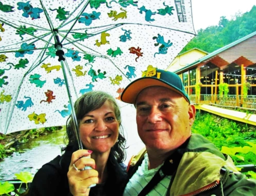 Smoky Mountain Road Trip Part 1 – Rainy Days and Fun Days
