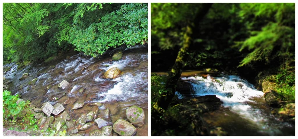 Visitors will see plenty of gentle streams cascading throughout the Great Smoky Mountain National Park.