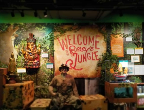 Oddities Galore At Ripley's Believe It Or Not