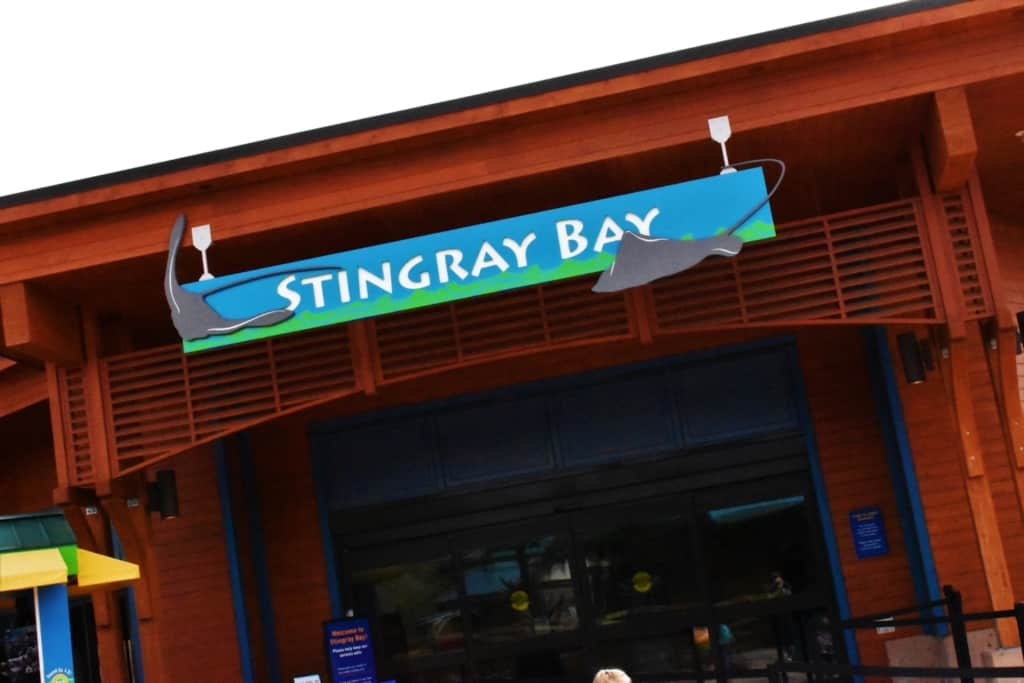 Stingray Bay is one of the newest exhibits at the Kansas City Zoo.