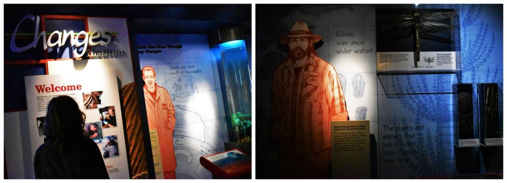 Changes is an exhibit designed to highlight how the lands of Illinois have changed over time.