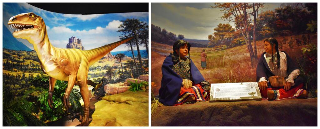 The Kenosha Public Museum continues the story with the history from prehistoric ages up to the native indians.