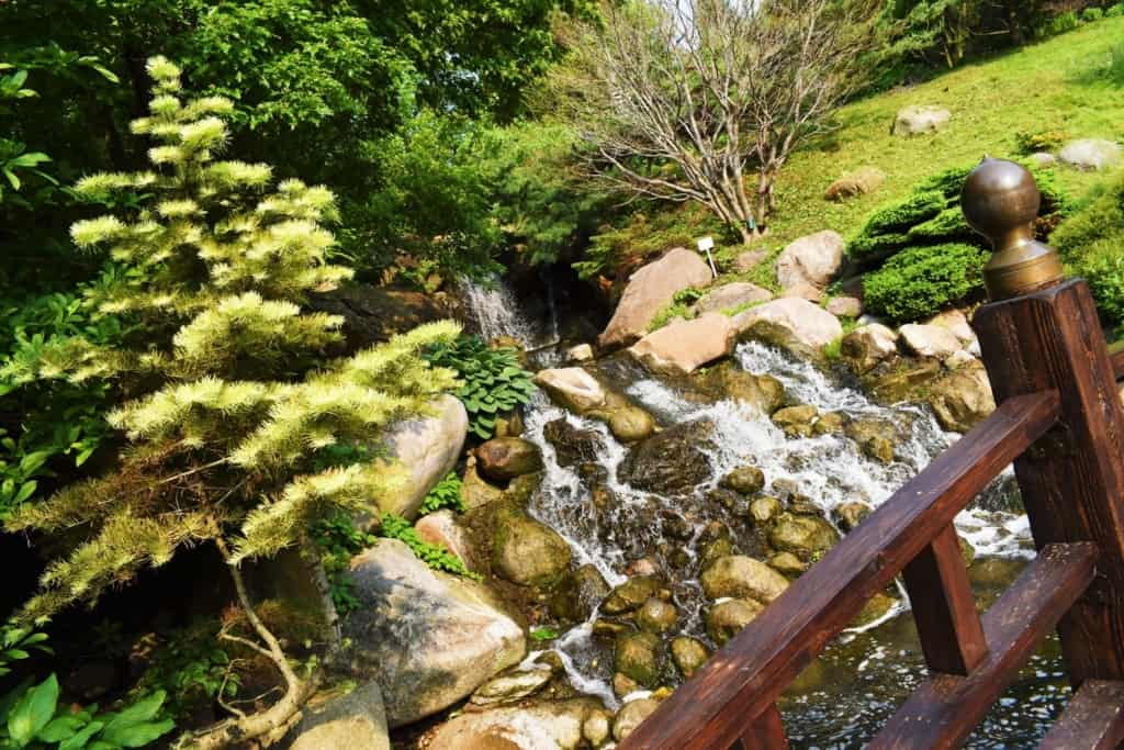 The rushing waterfall helps clam visitors and brings on a sense of relaxation, which is perfect for slowing your pace.