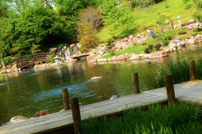 A peaceful setting helps you to slow your pace, while visiting the Dubuque Arboretum.