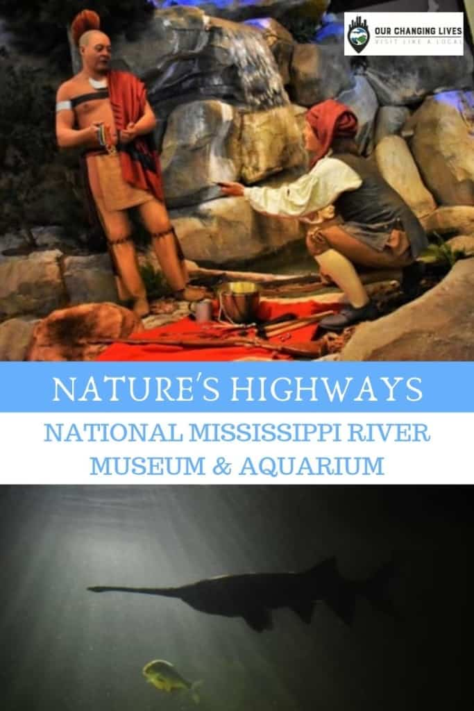 Nature's Highways-National Mississippi River Museum and Aquarium-rivers-animals-fish-traders-native Indians