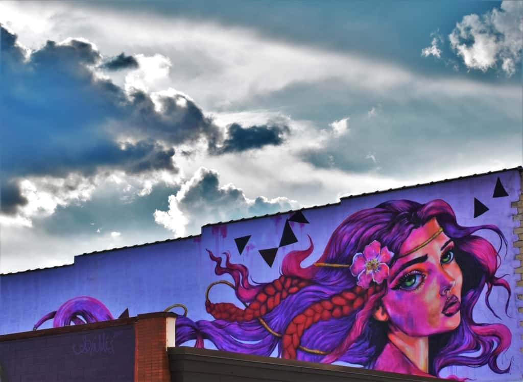 A visit downtown will allow you to discover Dubuque has a variety of murals.