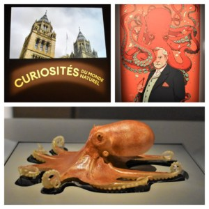The traveling exhibit about Oddities included the use of video, audio, and visual displays.