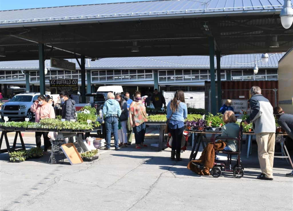 A sunny day draws shoppers to City Market, as they enjoy the loosening of the lockdown.