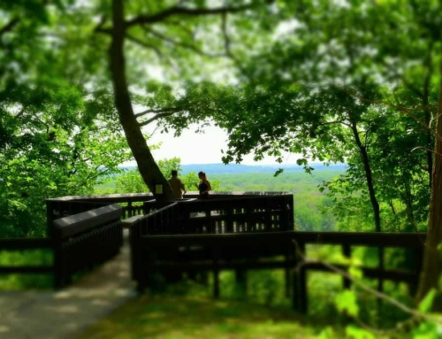 Back To Nature – Weston Bend State Park