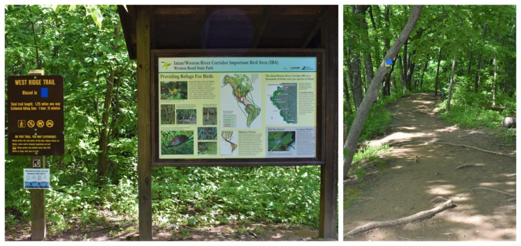 The West Ridge Trail is one of many that make up over 10 miles of trails in Weston Bend State Park.