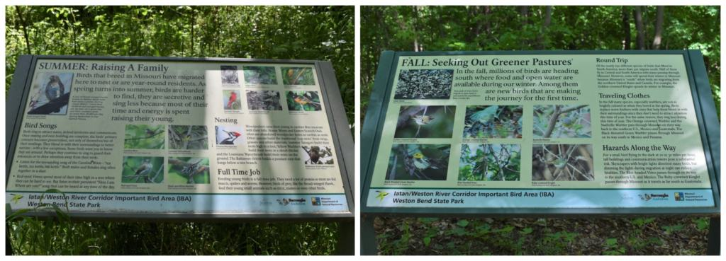 Ample signage helps visitors learn about the visiting wildlife.