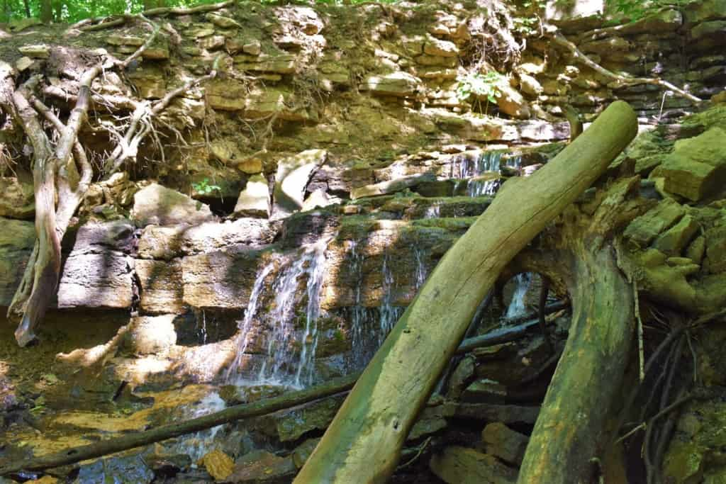 A small waterfall fills the surrounding area with the sounds of running water.