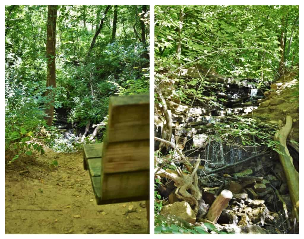 A bench offers a place to rest and meditate during a hike in the Parkville Nature Sanctuary.