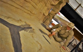 An archeologist works on a fossil that helps explain life in dinosaur days.
