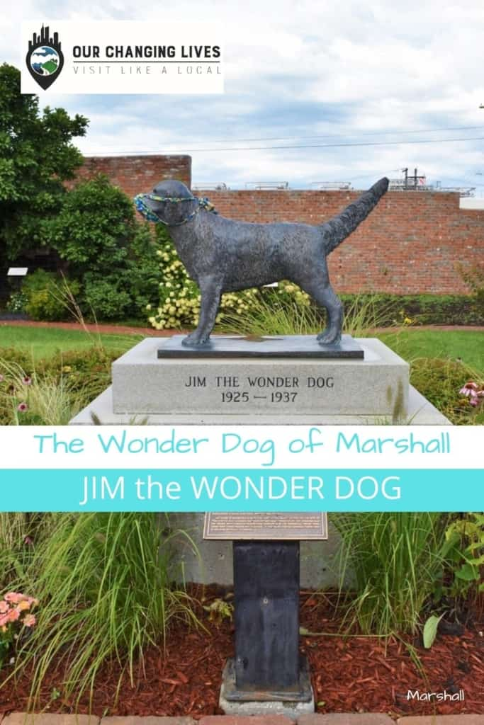 The Wonder Dog of Marshall-Jim the wonder dog-Marshall, Missouri-psychic-great depression