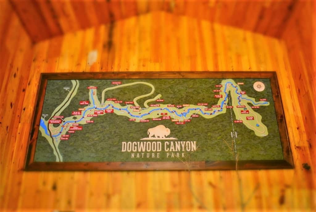 An oversized map shows the path visitors can take as they explore Dogwood Canyon.