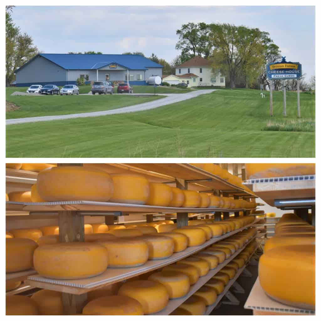 At Frisian Farms we collected a nice selection of Gouda cheeses.