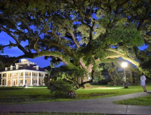 Crown Jewel Of The River Road – Houmas House
