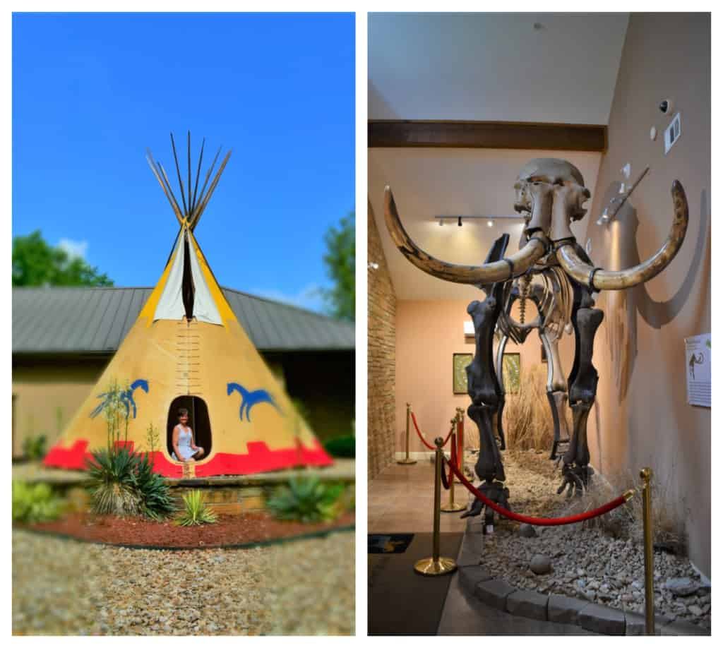 The use of notable artifacts makes a visit to the Museum of Native American History an easy way of facing the past.